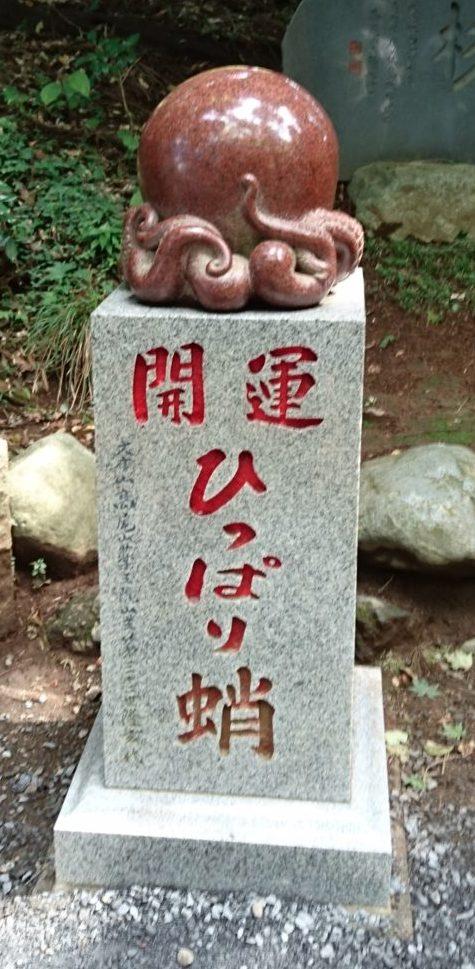 高尾山ひっぱり蛸