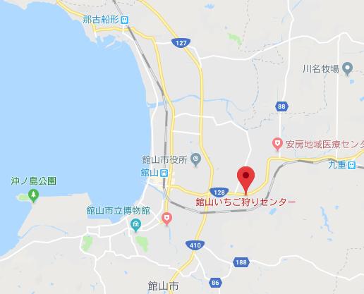 館山いちご狩りセンターのイチゴ狩り