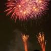 【さいたま市花火大会(東浦和 大間木公園会場)2019】口コミ・混雑・みどころ・人気・評価