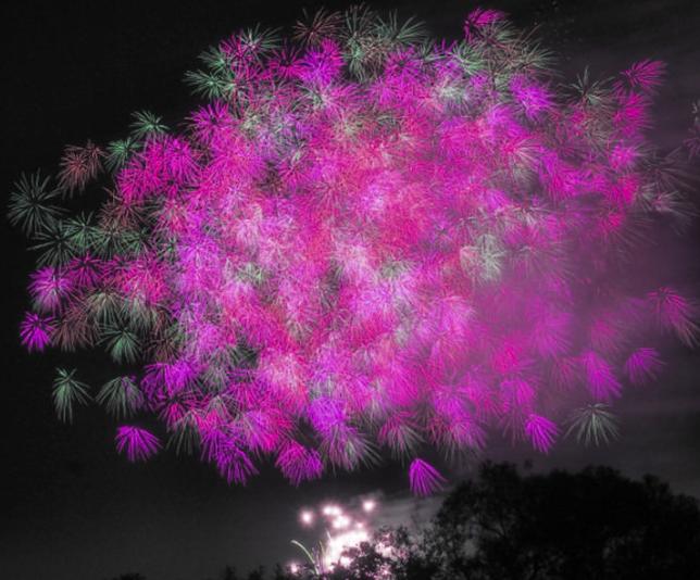 足立の花火2020 関東の花火大会