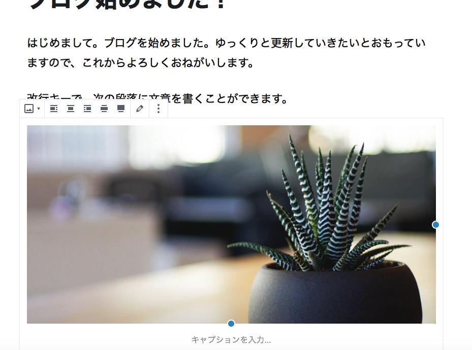 WordPress(ワードプレス)写真挿入 ブログの始め方